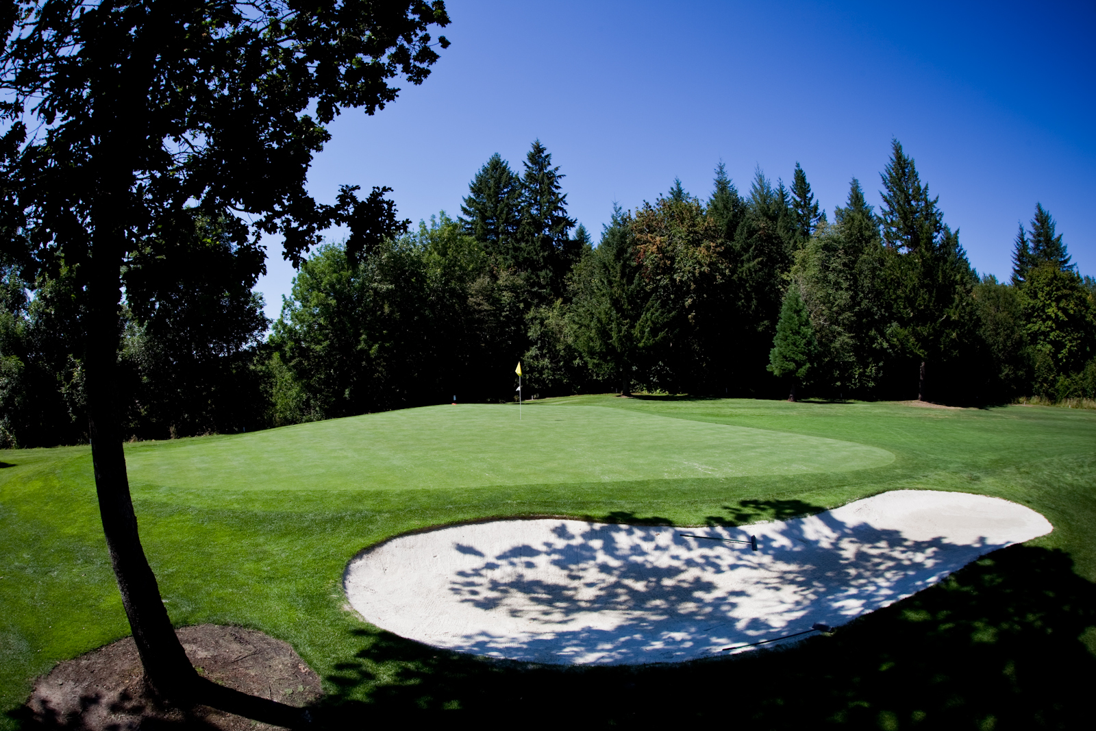Image Result For Mckay Creek Golf Course