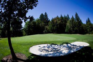 McKay Creek Golf Course green photo